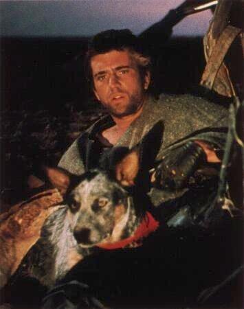 War Dogs Movie Australian Release